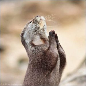 praying for personal training clients
